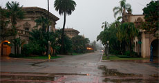 Thumbnail image for Rain Cleanses Balboa Park Of Tarot Card Readers